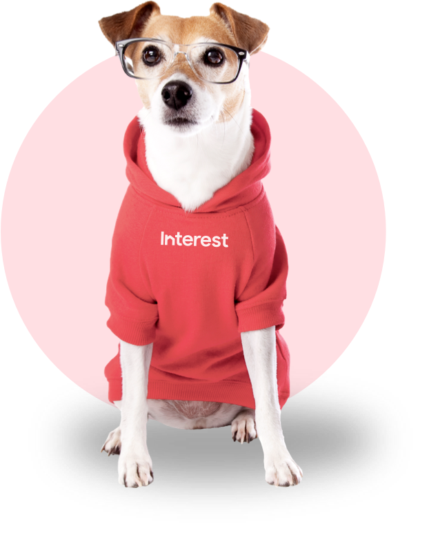 Picture of dog in a hoodie