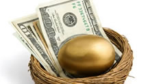 Golden egg and money in a nest