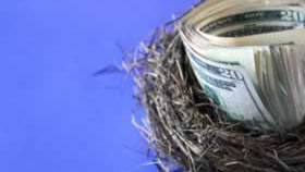 wad of cash in a nest