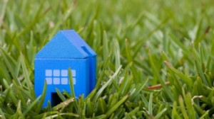Blue toy house in grass