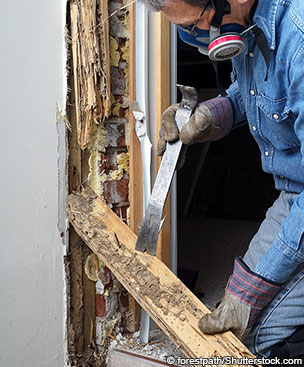 8-critical-home-repairs-you-cant-ignore-9